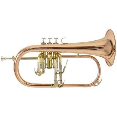 Bach Szárnykürt FH-501